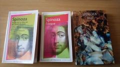 adaptation hédonique,philosophie,spinoza,littérature